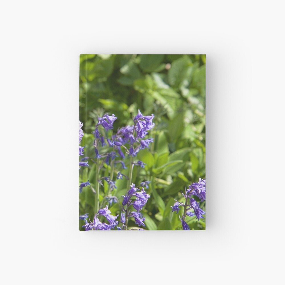Bluebells Hardcover Journal