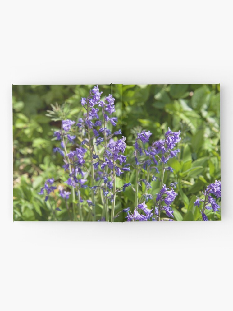 Alternate view of Bluebells Hardcover Journal