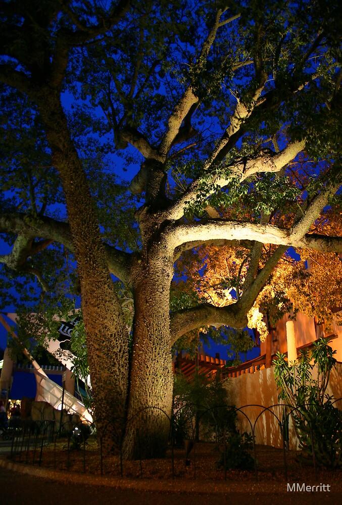 Exotic Tree by MMerritt