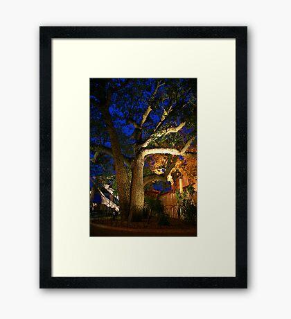 Exotic Tree Framed Print