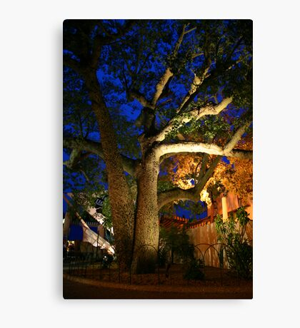 Exotic Tree Canvas Print