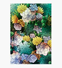 Succulent World Photographic Print