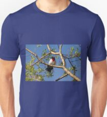 Male Rose Breasted Grosbeak Unisex T-Shirt