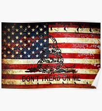 American Flag And Viper On Rusted Metal Door - Don't Tread On Me Poster