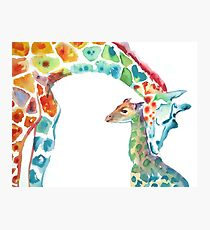 Giraffe Mommy and Baby Photographic Print