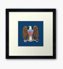NSA Framed Print
