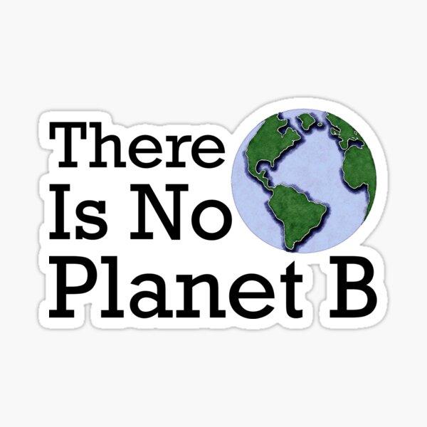 Es gibt keinen Planeten B. Sticker