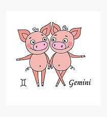 Gemini zodiac sign in cartoon style Photographic Print