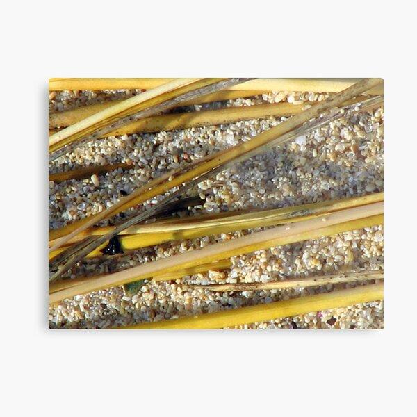 Beach Bamboo Metal Print