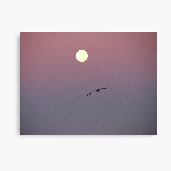 Follow Your Dreams Canvas Print
