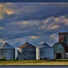 On the Farm by Sheryl Gerhard
