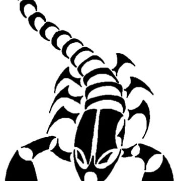 TheScorpion by theboy00234
