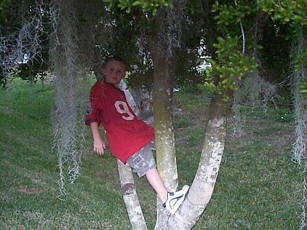 Standing in the Tree by karen66