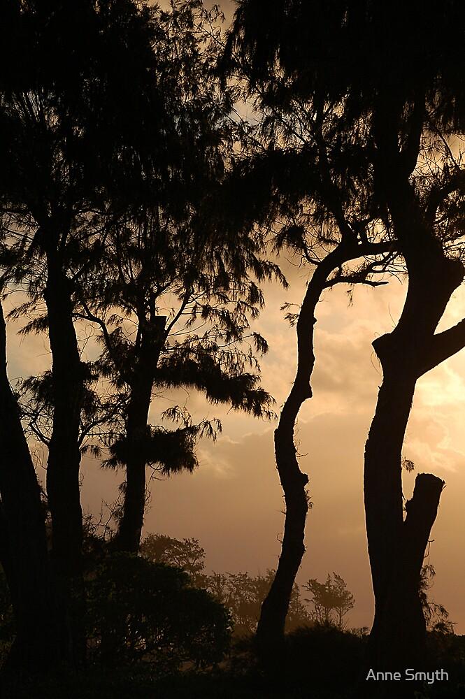Sunrise by Anne Smyth