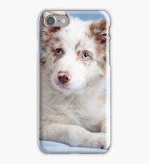 Cute border collie puppy iPhone Case/Skin
