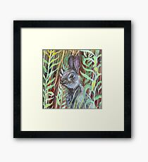 Wild bunny in tall grass Framed Print
