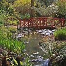 Subtropical Gardens, Abbotsbury by RedHillDigital