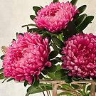 Three Asters - Tray by Sandra Foster