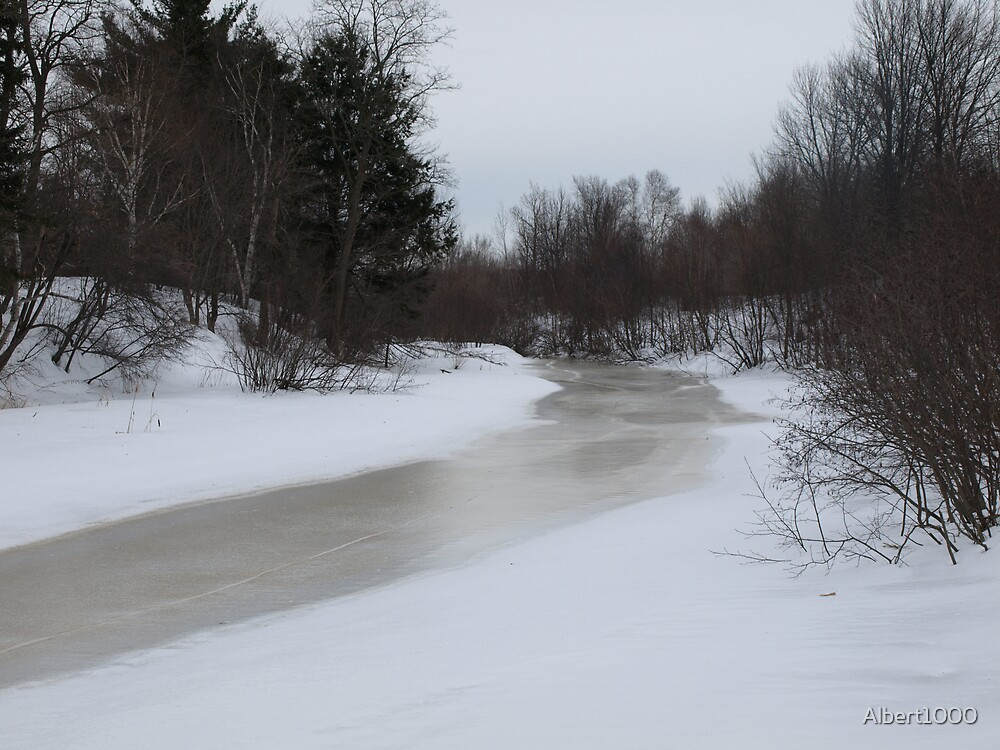 My frozen brook by Albert1000
