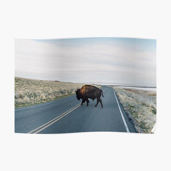 Seldom is Herd Poster