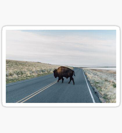 Seldom is Herd Sticker
