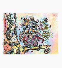 Rainbow of Peace Owl Photographic Print