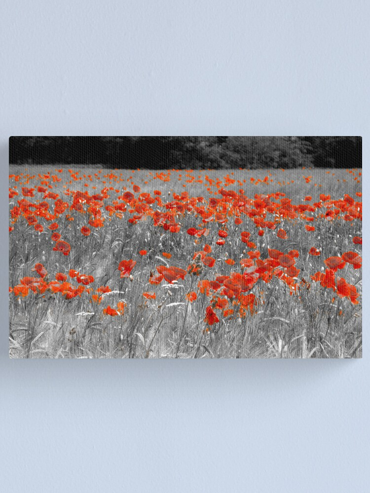Alternate view of Mono Poppies Canvas Print