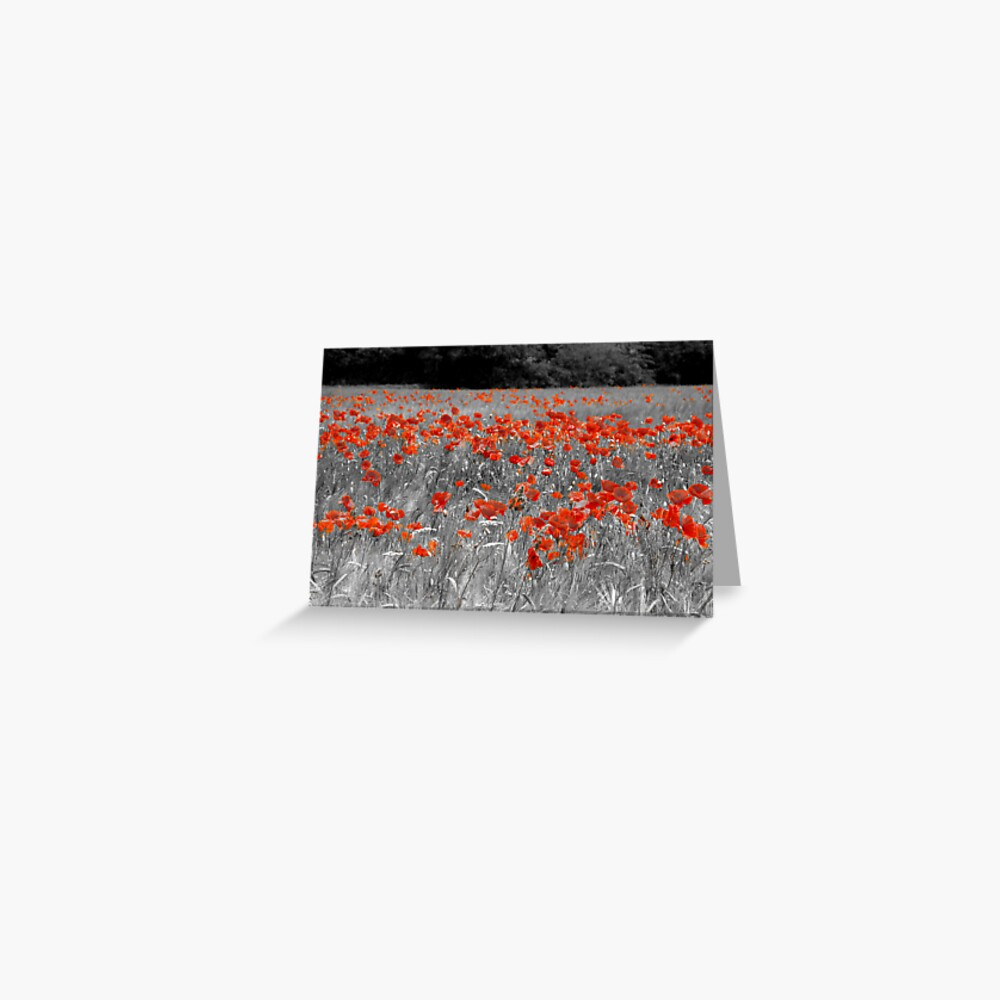 Mono Poppies Greeting Card