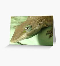 lizzard Greeting Card