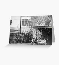 Rothesay fountain closeup B&W Greeting Card