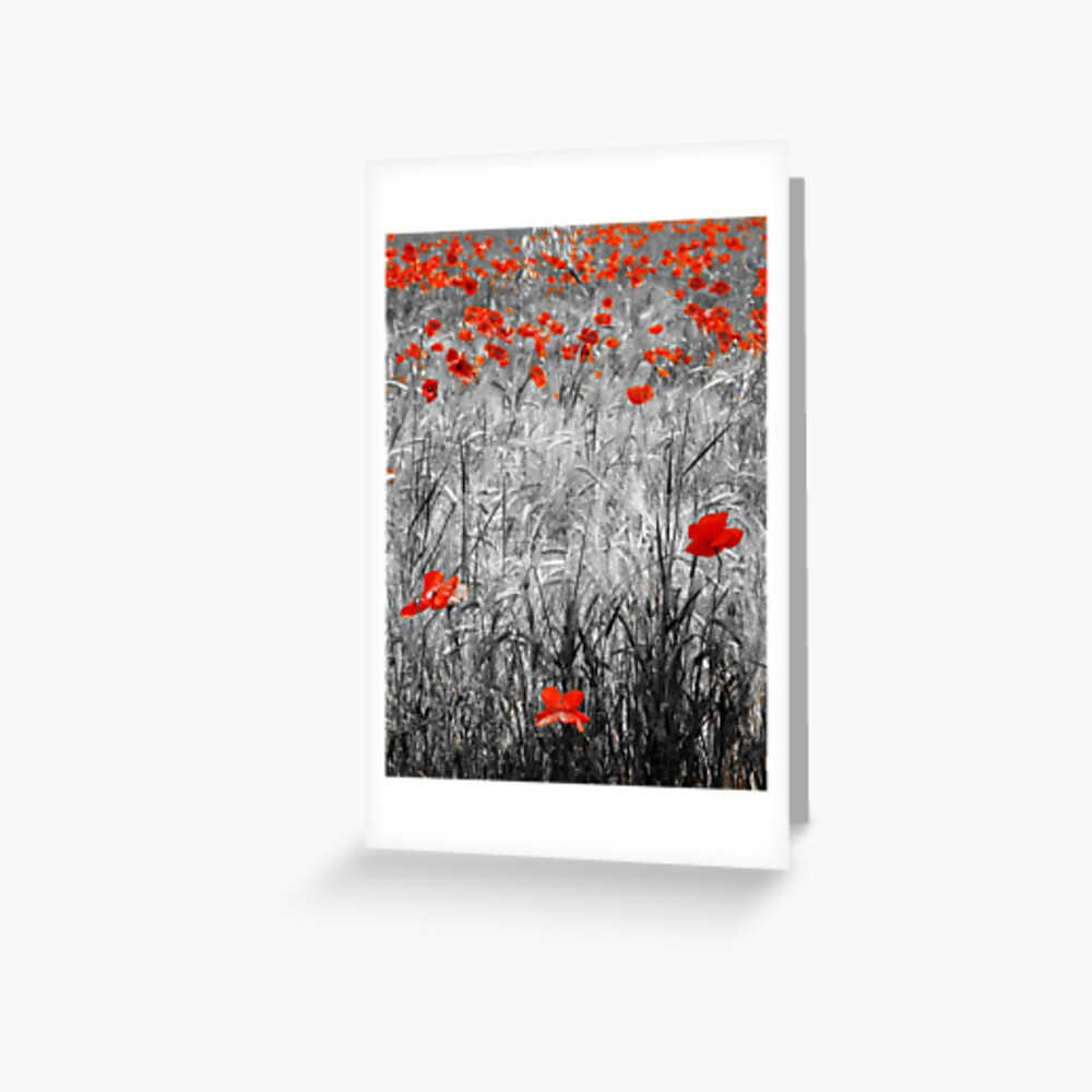 Poppies Mono 2 Greeting Card