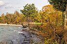 Autumn at Sandbanks by PhotosByHealy