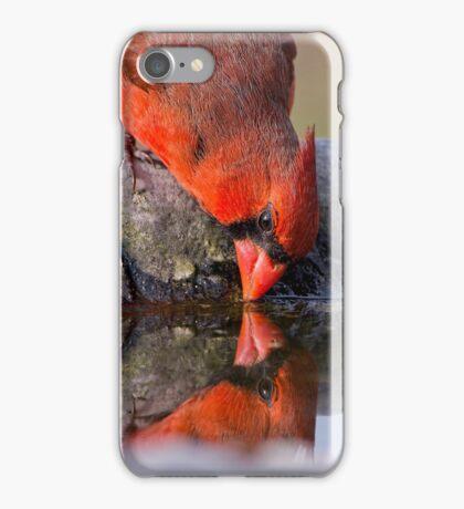 Redbird Reflections iPhone Case/Skin
