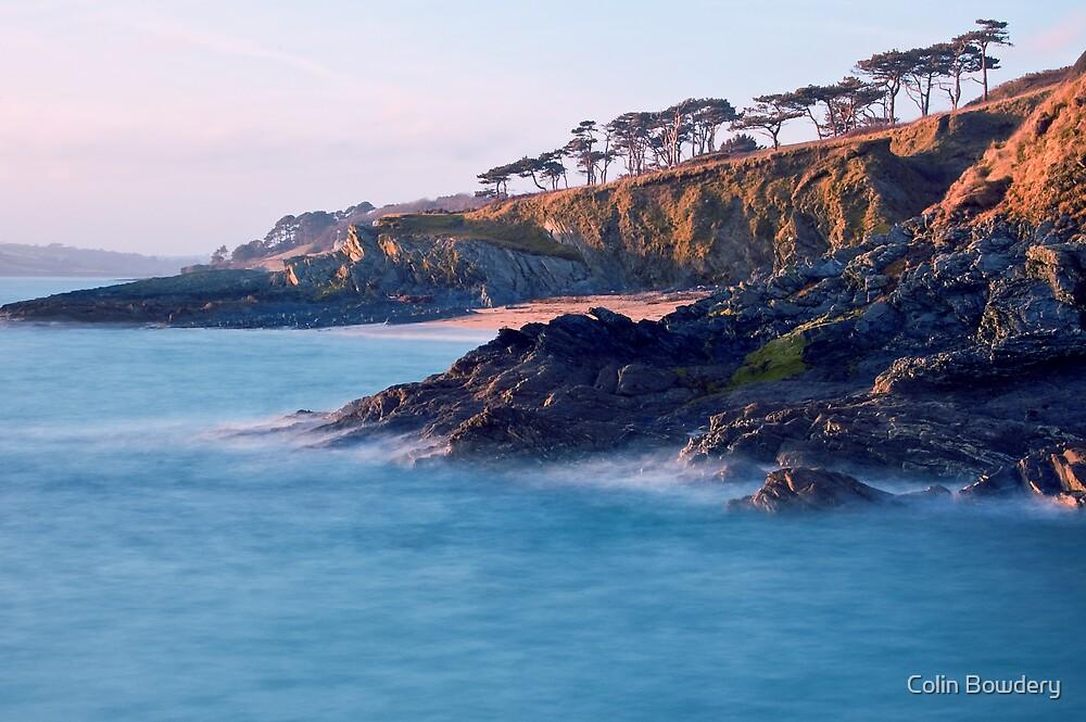 Roseland Peninsula, Cornwall by Colin Bowdery