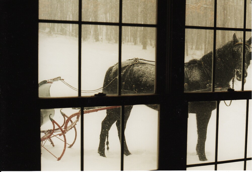 snow day by Derrick Dupler
