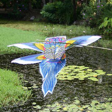 Flying Fish Kite by kaety