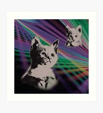 Cat on We Have Lasers Art Print