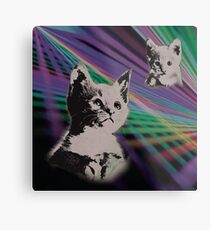 Cat on We Have Lasers Metal Print