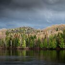 Spring Storm Coming by Jola Martysz