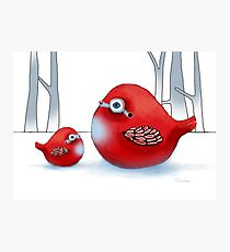 Little Red Robins Photographic Print