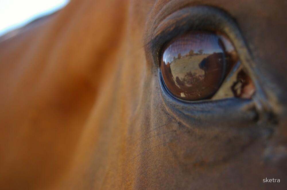 Brown Eyed Beast by sketra