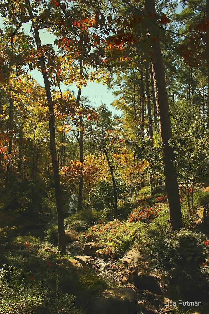 Sunlight in the Garden by Lisa G. Putman