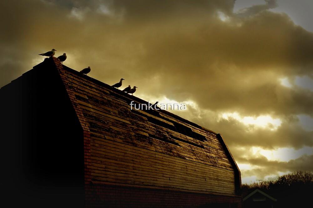 The Birds by funkcanna