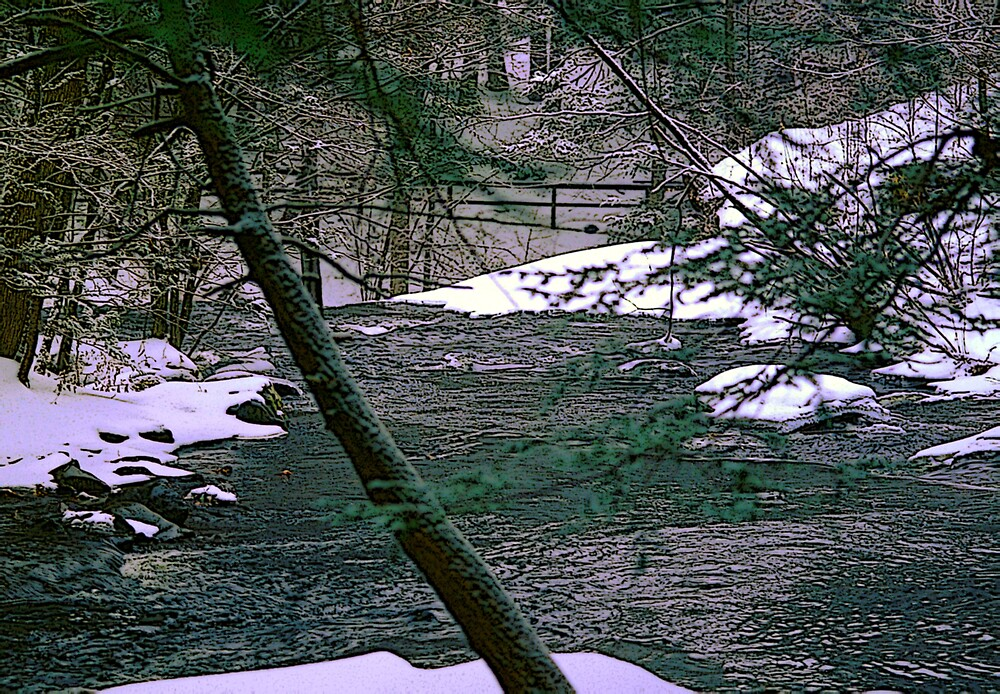 Winter in Childe State Park by Russell Anderson