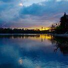 River Dreams by Barbara  Brown