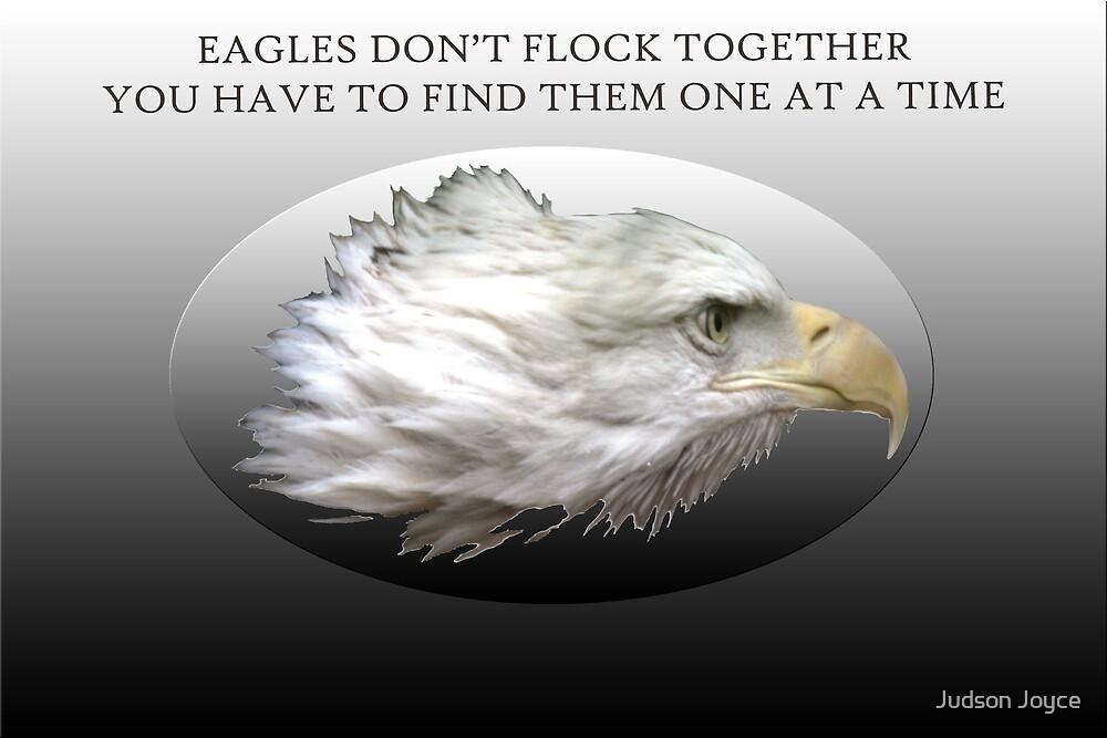 Eagles Don't Flock Together by Judson Joyce
