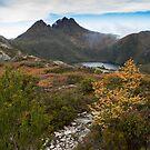 Autumn at Cradle Mountain by Stephanie Johnson