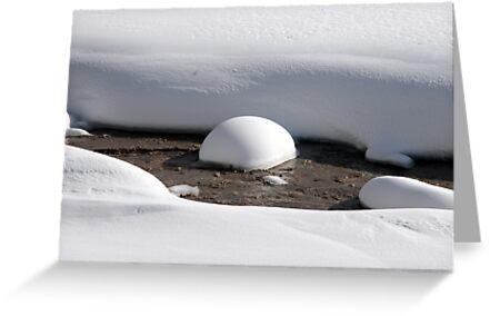 Snow in the Creek by Judson Joyce