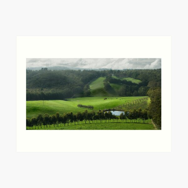Adelaide Hill's in Green. Art Print