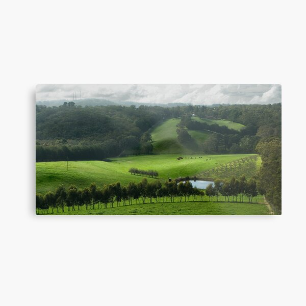 Adelaide Hill's in Green. Metal Print